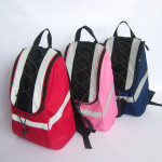 Bags, Cases, Totes, Misc